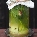 Kalarepa kiszona w soku z ogórków małosolnych. Sezonowo od A do M